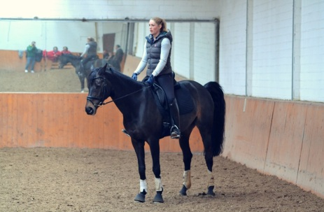 Qualified grooms, such as Julia, work with the horses and create variety during the day.